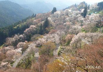 000mokutekichi