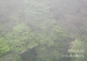 086tsuribashikara2