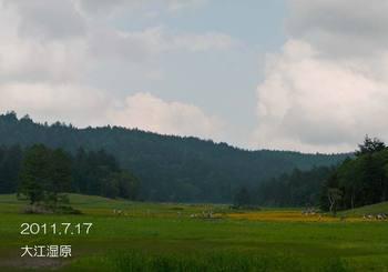 047motochouzoukara