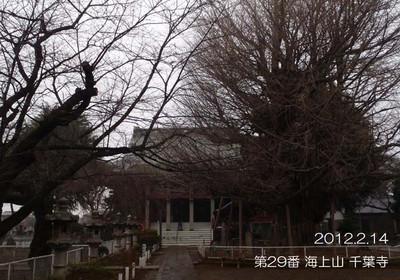 011senyouji