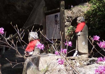 今回の発見♪お地蔵様の石の色と、ミツバツツジの薄紫はよく似合う♪
