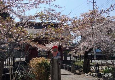 昨年は、三峰神社に行く前に寄り道しました♪池のあるお寺♪K島隊員もお気に入りのお寺です♪