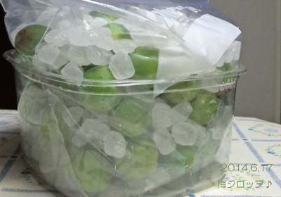 青梅1キロ♪氷砂糖1キロ♪くま印♪のこだわりのレシピです♪(笑