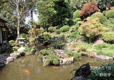 このお庭は、本堂に上がらないと見えないです♪